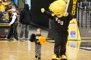 A future Shocker cheerleader helps WuShock lead a cheer during Sunday's Shocker basketball welcome home event.