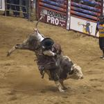 Professional Bull Riders bucking back to Duluth