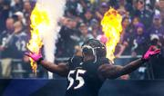 Terrell Suggs is introduced to a loud ovation before a crowd of 71,319 at M&T Bank Stadium on Sunday.