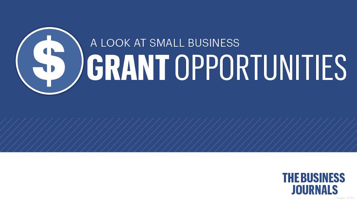 SBA sees slowdown in EIDL loans, Targeted Advance EIDL grant approvals as changes, deadline loom - Washington Business Journal