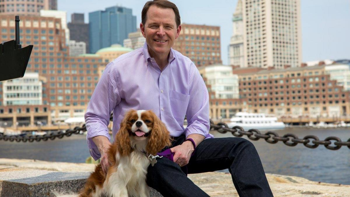 Groomed for growth: A look at Boston's 'pet tech' sector