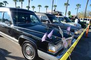 A fleet of customized hearses are among the parking lot eye candy outside the DoubleTree at Universal Orlando during Spooky Empire.