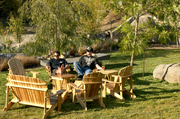 """Stone Brewing's facilities """"have lush gardens that transport people from the stuffy confines of their work spaces to a relaxing environment,"""" CEO Greg Koch said."""