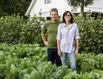 Growth of urban farms stunted by controversy