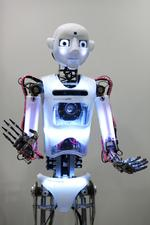 Robots to steal jobs from humans, raise legal questions
