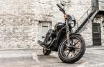 Harley-Davidson dealer: Street motorcycles fill void in lineup