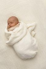 SIDS research discovers how a brain abnormality may cause infant death