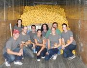 DunnhumbyUSA employees help prep 30,000 ducks for the annual Rubber Duck Regatta.