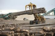A set of GreenWood Resources logs hits the materials handling phase. Since the 1980s, capital available for timber investments has grown by more than 20 percent a year.