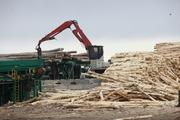 GreenWood Resources grows a lot of poplar trees that are processed at a Collins Companies facility in north-central oregon. GreenWood's grove, along Interstate 84, includes 31,800 acres. The company itself has more than 100,000 acres of new investment projects in its pipeline.