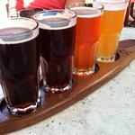 Tampa a 'Best Beer Town'? It needs to happen