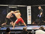 Does New York's MMA legalization hinge on a Nevada labor battle?