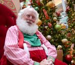 Festive facts about the business of Christmas