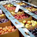 Fruitbelt market has City Hall backing
