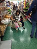 Pet retailer eyes expansion in crowded metro market