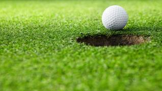 Tell us about your golfing habits
