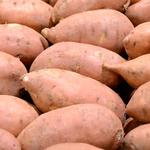<strong>Ham</strong> Produce Co. to create 57 jobs in Farmville with sweet potato facility