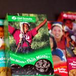 Girl Scouts official charged with embezzlement