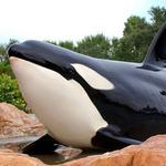 SeaWorld changing course from international growth to new hotels