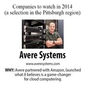 Avere Systems develops NAS optimization solutions. Partnering with online retailer Amazon Inc. in November, Avere launched what it believes is a game-changer for cloud-data storage.