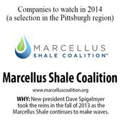 Marcellus Shale Coalition is a natural gas industry trade group. New president Dave Spigelmyer took the reins in the fall of 2013 as the Marcellus Shale continues to make waves.