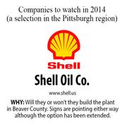 Will they or won't they build the petrochemical company in Beaver County? Signs are pointing either way, although Shell extended its option into this year with Horsehead Holding Corp.