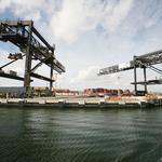Port Tampa Bay buys cyberliability insurance