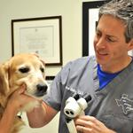Ophthalmologist Andrew Greller is partial to pet projects