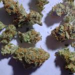 General Assembly bill would regulate and tax marijuana like alcohol