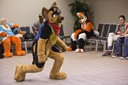 This wolf is break dancing at the tryouts for the big competition Sunday night.