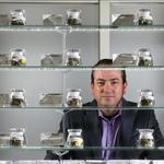 Washington's loose medical marijuana laws lead consumers back to black market