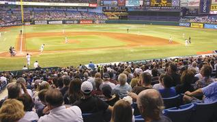 Will you go to a Tampa Bay Rays game this season?