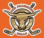 No bull: San Francisco's hockey team folds