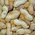 That's not peanuts: California nut company to bring 200 NM jobs