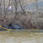 Duke Energy will change coal ash storage at Dan River and other retired plants