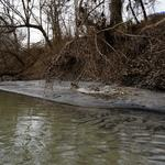 Environmental groups offering reward for evidence of wrongdoing in coal ash spill