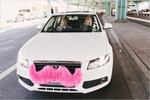 Lyft finds 'Superfur' for pink mustaches