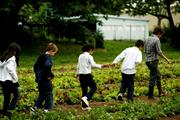 """Zenger Farm hopes to complete fundraising for its """"urban grange"""" soon. It's just another step in the outfit's strides toward becoming a premier working and learning urban farm. Plus, it'll do wonders for its East Portland neighborhood."""