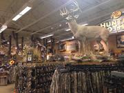 With 20 more Bass Pro Shops locations expected, the company is expanding at the right time. Consumers spend $646 billion on outdoor recreation annually.