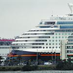 Port Canaveral posts record cruise numbers for FY 2017