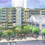 Hawaii to hold more public hearings on Castle & Cooke, Kamehameha Schools' Kakaako projects
