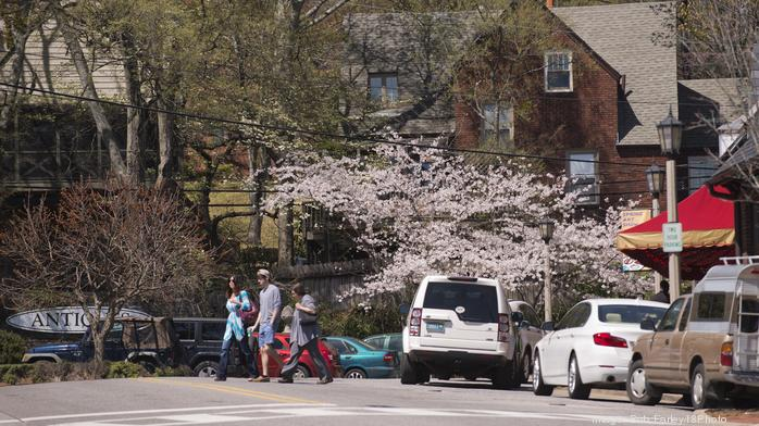 Mountain Brook intersections to undergo traffic studies