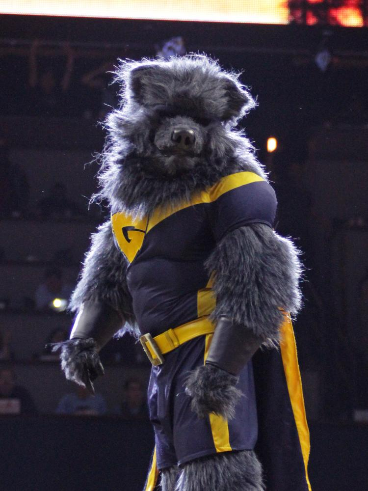 With nine games left in the regular season, tickets to see Grizz and the Grizzlies are still among the cheapest in the NBA