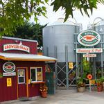Hawaiian craft brewer chooses Cincinnati to make mainland debut of new beers
