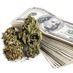 ​State tax board considers amnesty to collect from pot growers and sellers