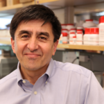 OHSU researcher sheds light on how to safely conduct gene therapy