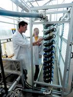 10 companies to watch: Heliae transforming algae into Arizona's next cash crop