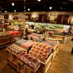 The Fresh Market targets fall opening for Mallard Creek store