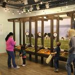 Children's Museum of Denver exhibit gives kids the farm-to-table experience (Slideshow)