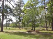 No. 3: Red Wolf Golf Resort